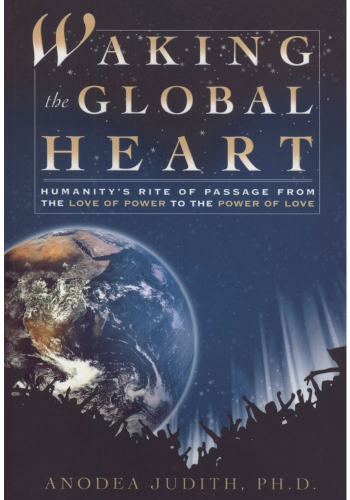 Waking the Global Heart Book