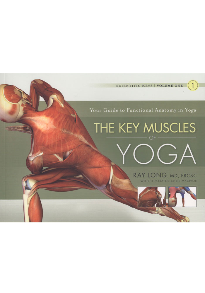 The Key Muscles Of Yoga Vol 1 Book The Key Muscles Of Hatha Yoga