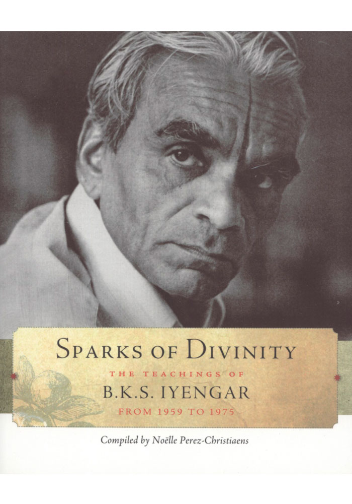 Sparks of Divinity Book